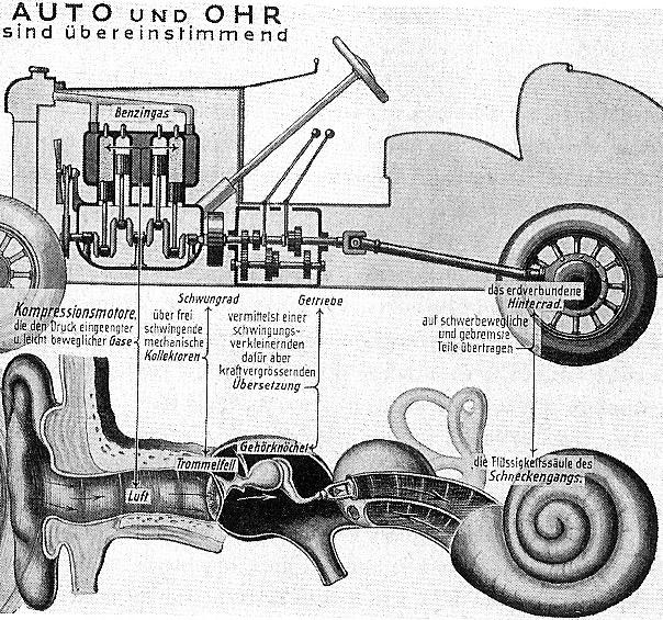 autoohr1.jpg