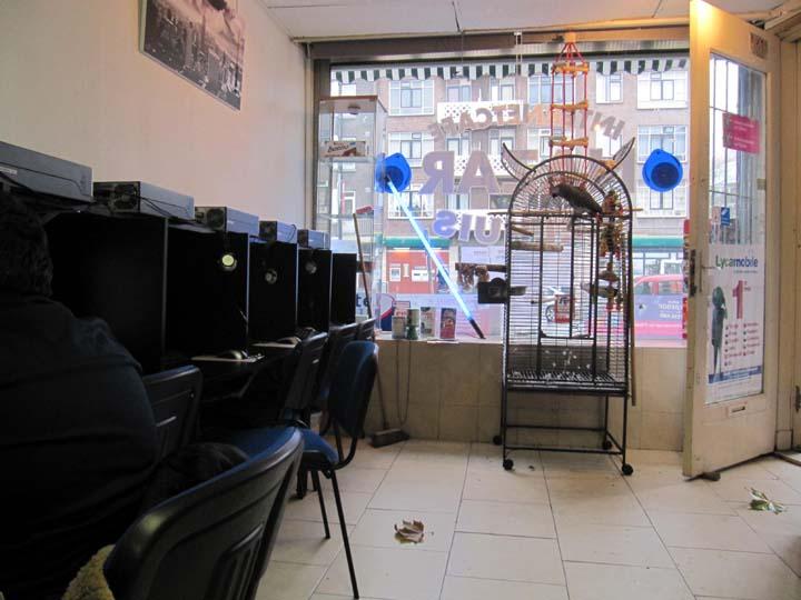 Internet Cafe Montclair Nj